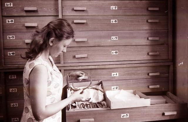 Megida iekārto jaunos arheoloģijas kolekcijas skapjus 1969.g. J.Šūstera foto